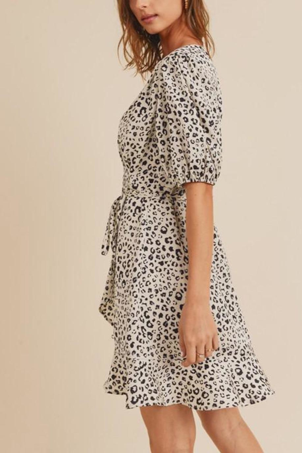 In Loom Leopard-Print Wrap Dress - Back Cropped Image