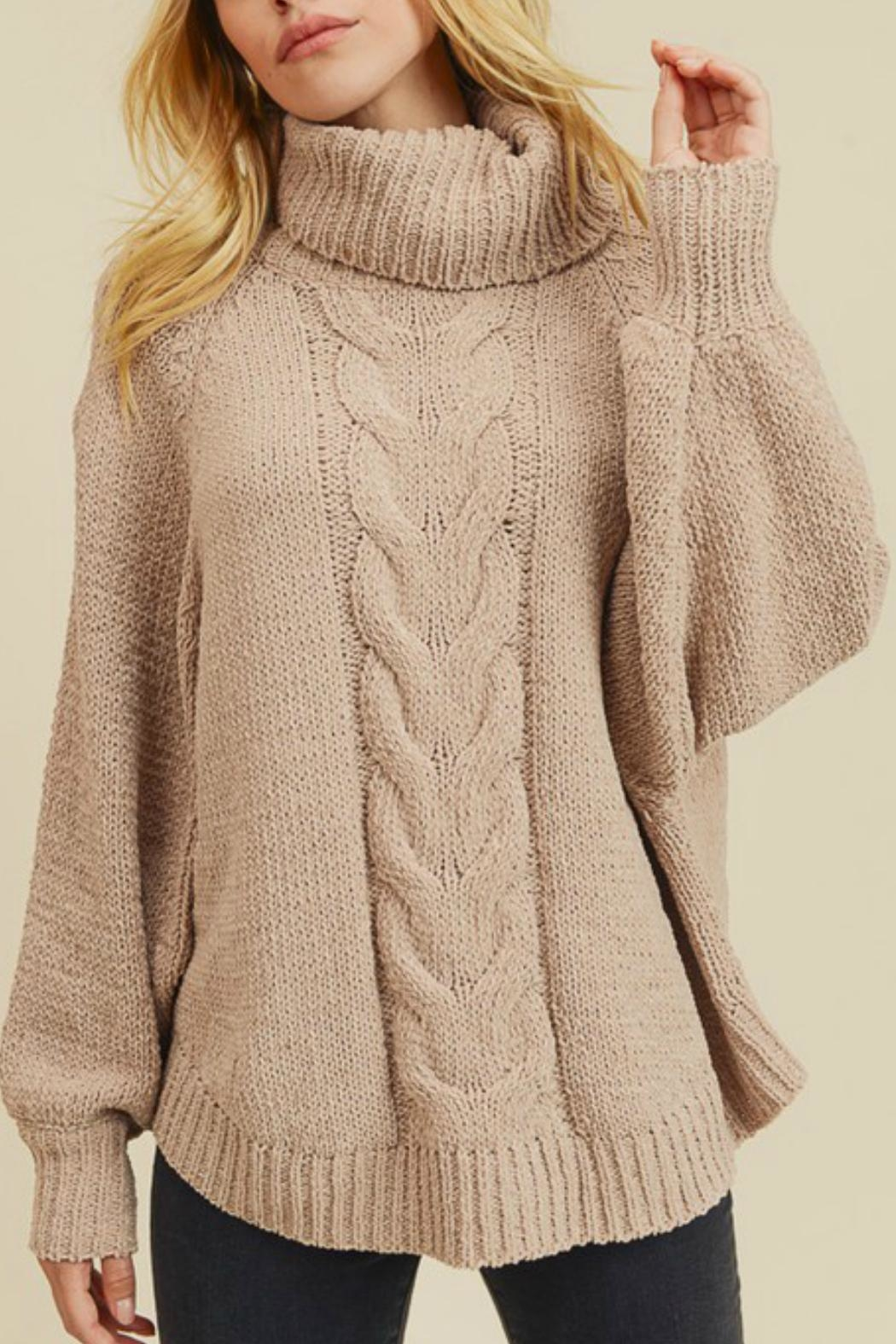 In Loom Matte Cable-Knit Turtleneck - Main Image