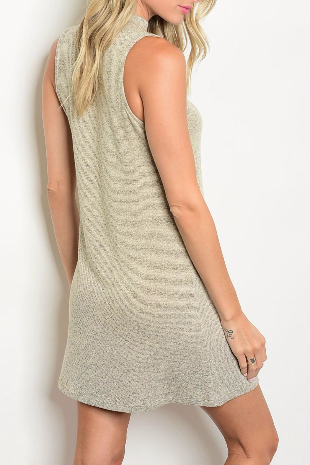 In Style Taupe Mock Neck Dress - Front Full Image