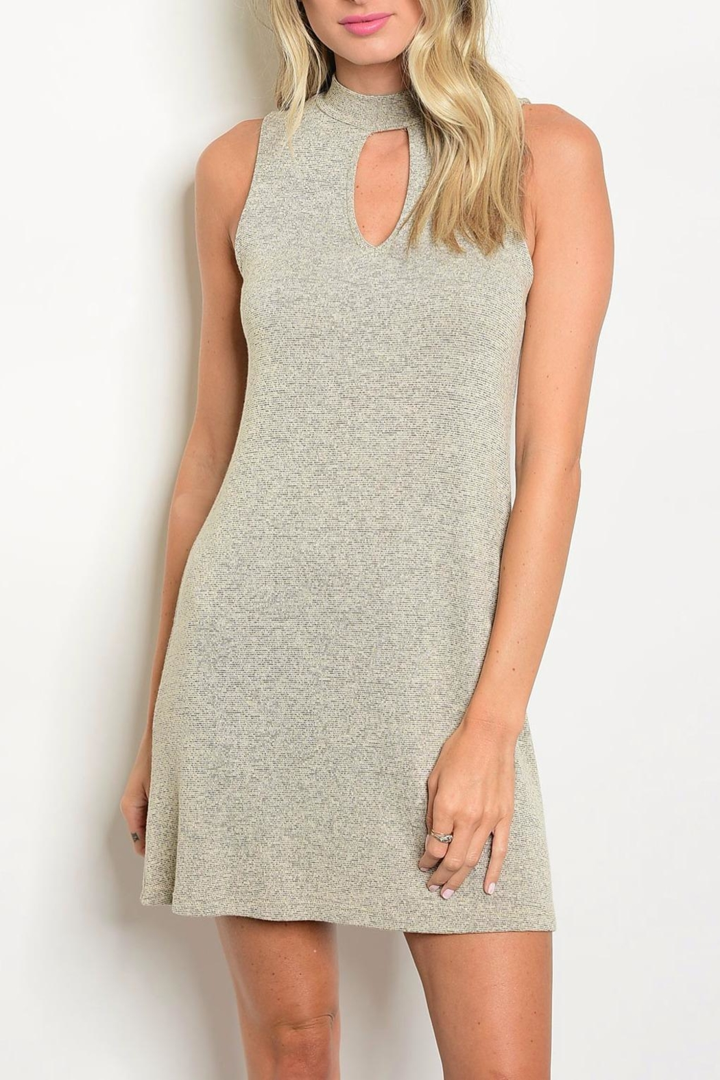 In Style Taupe Mock Neck Dress - Main Image