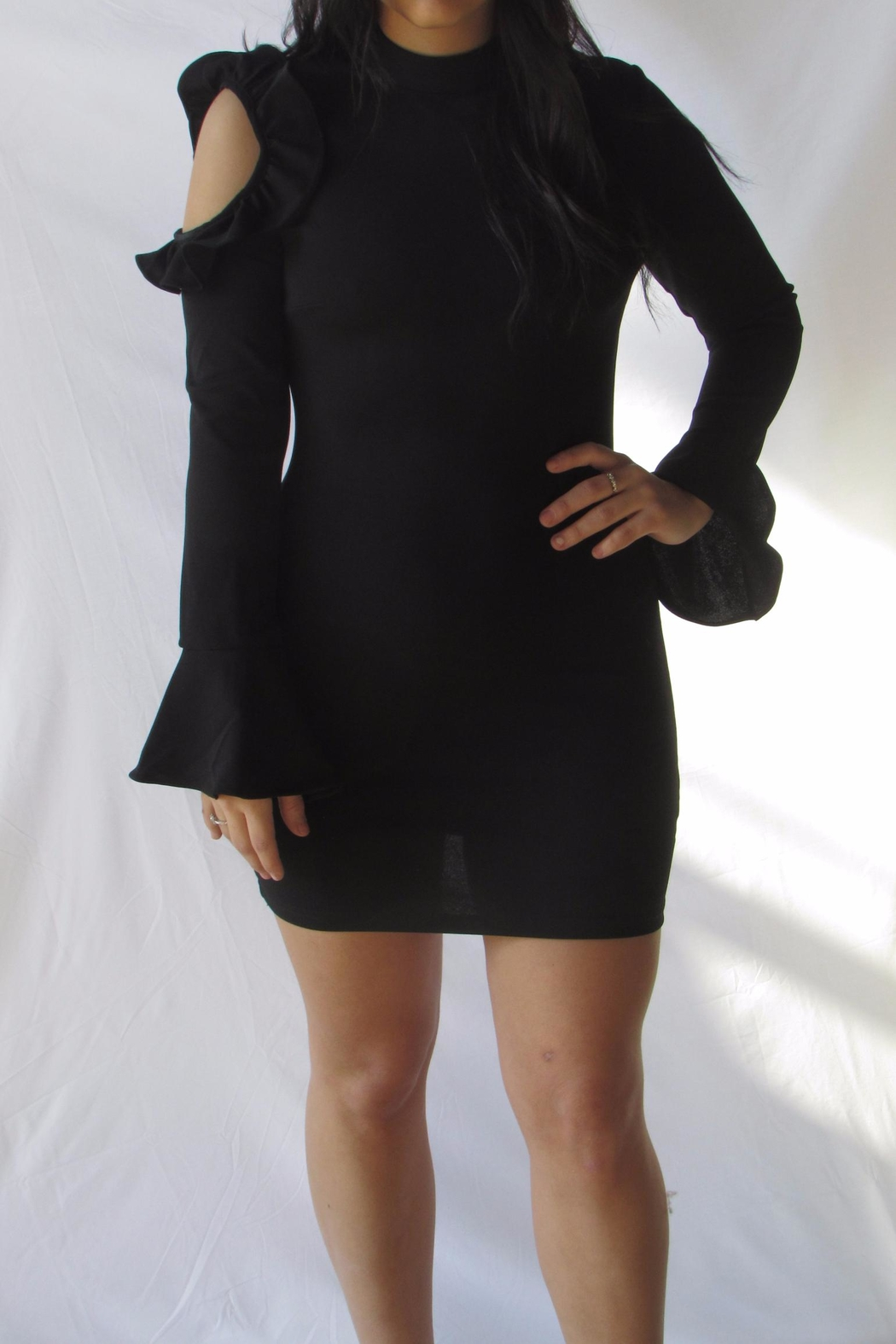 Ina Bell Sleeve Dress - Front Cropped Image