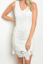 Ina Crochet Mini Dress - Front cropped