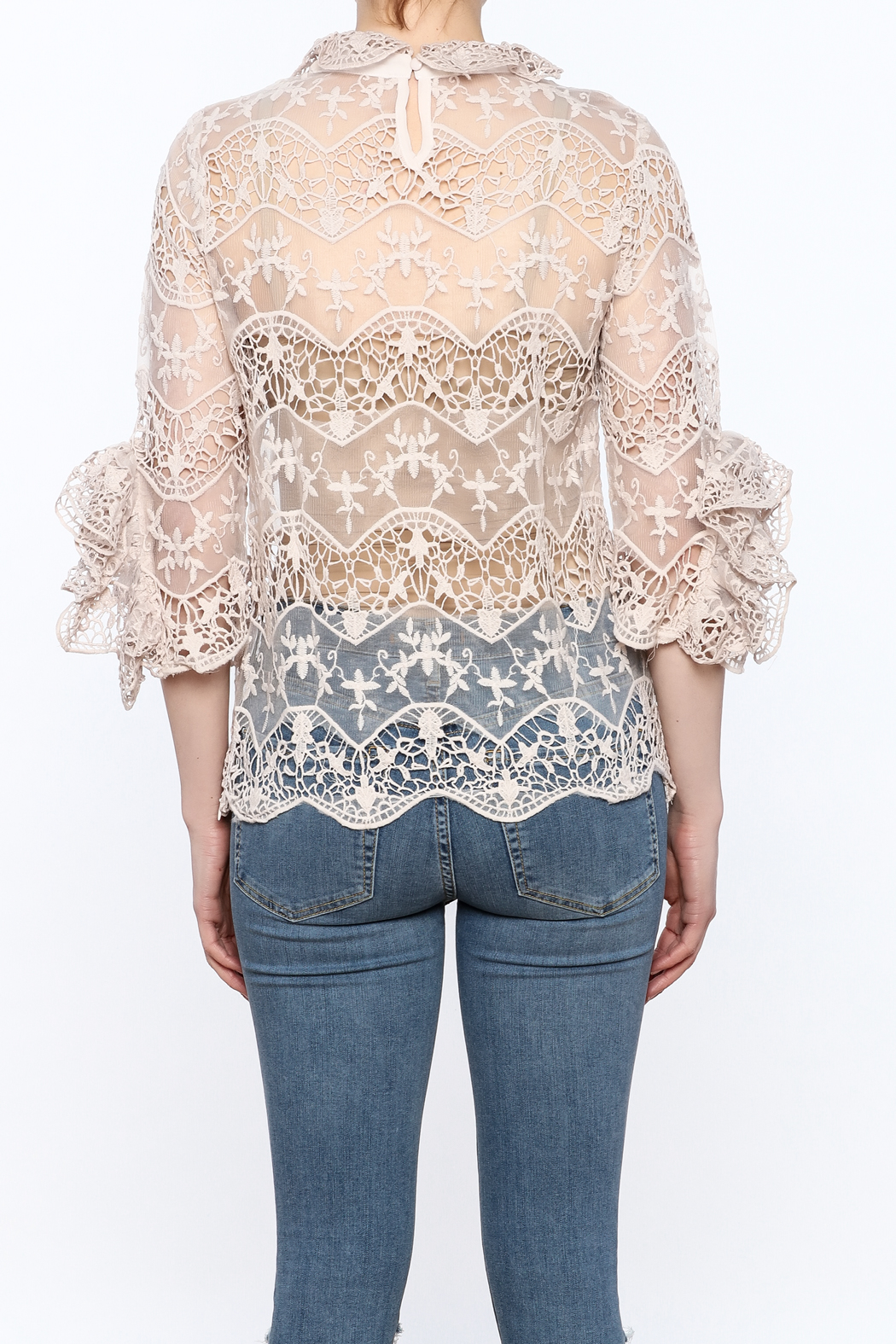 Ina Blush Lace Top - Back Cropped Image