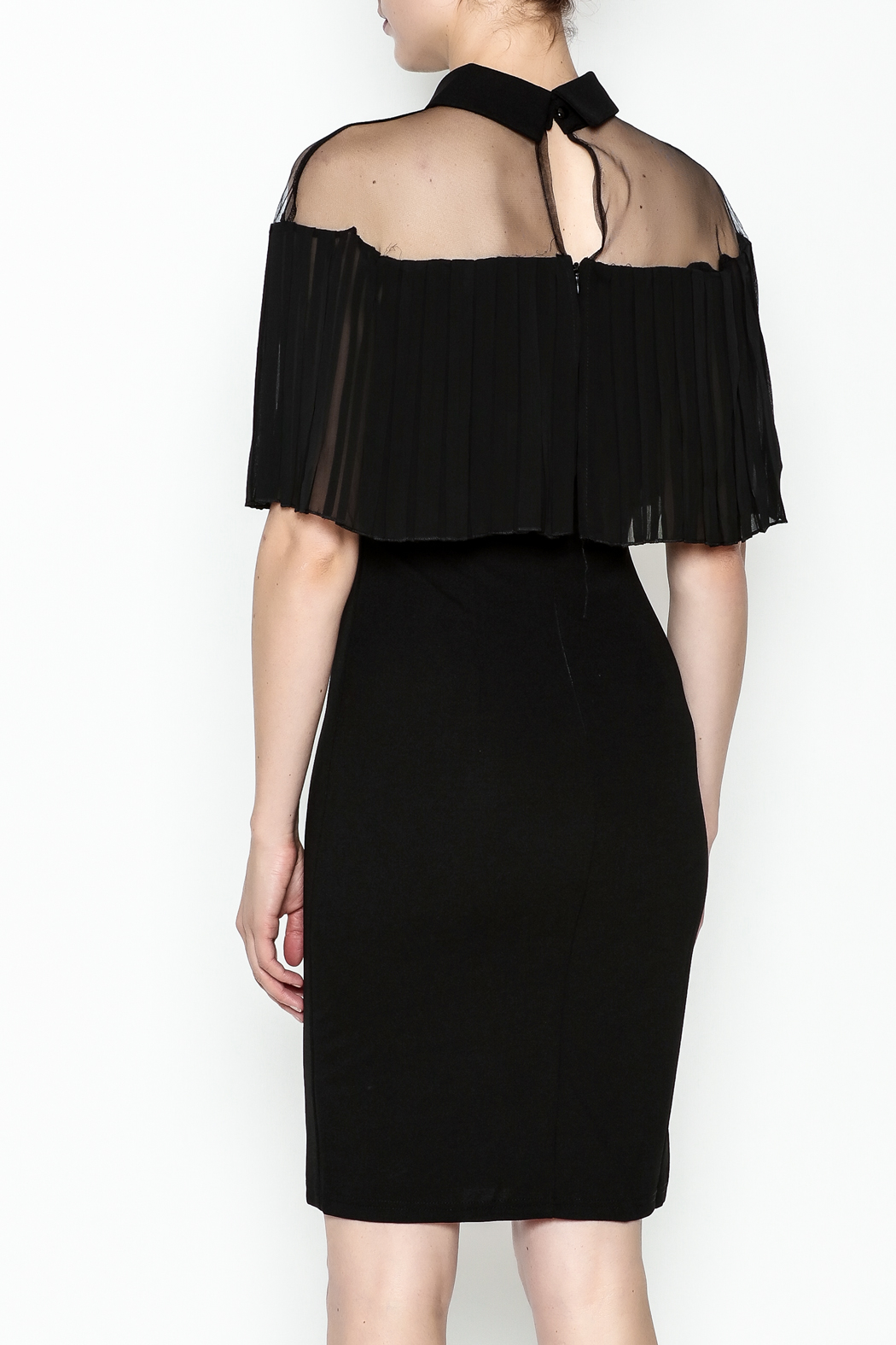 Ina Mesh Top Dress - Back Cropped Image