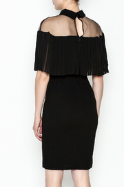 Ina Mesh Top Dress - Back cropped