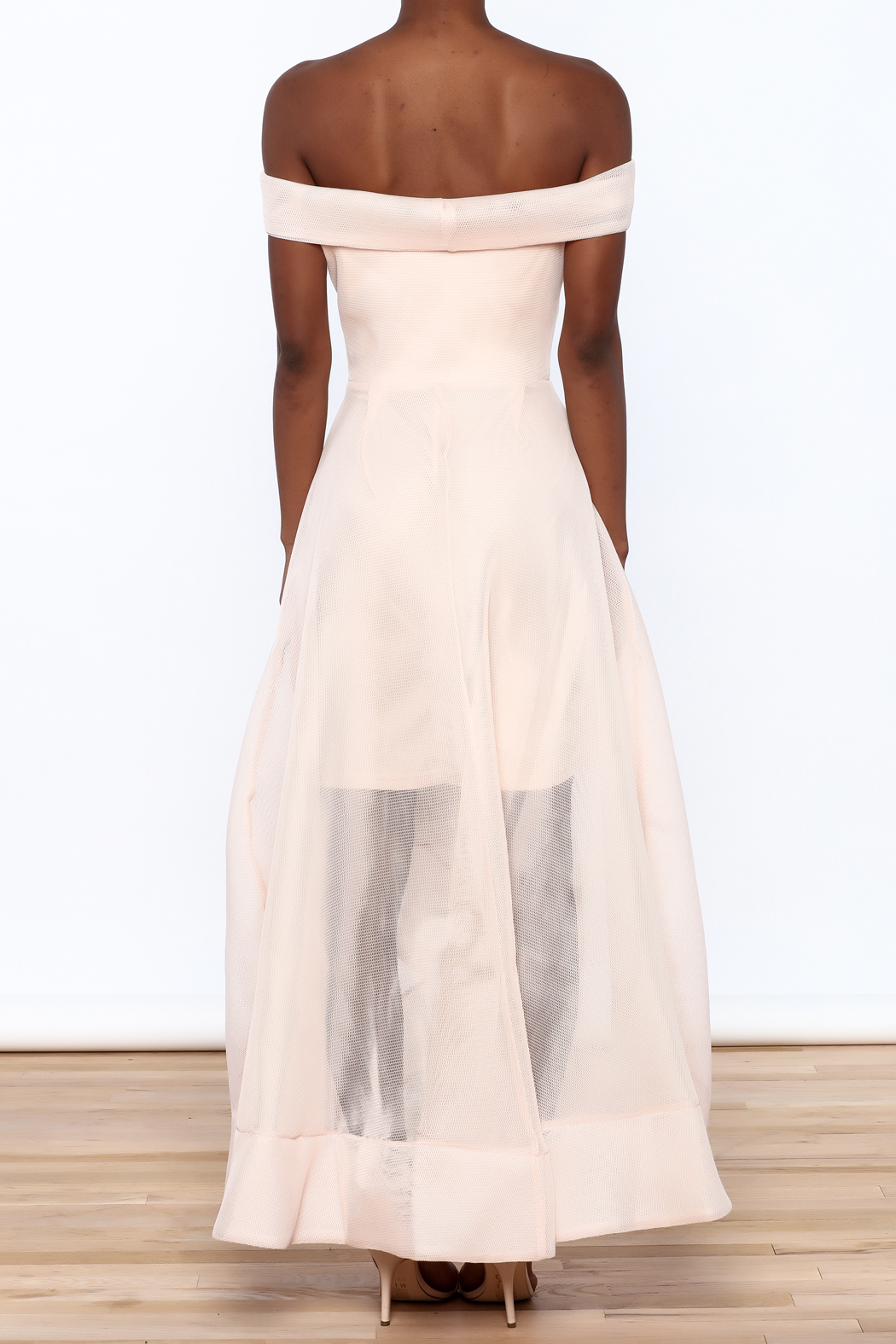 Ina Sweet Blush Dress - Back Cropped Image