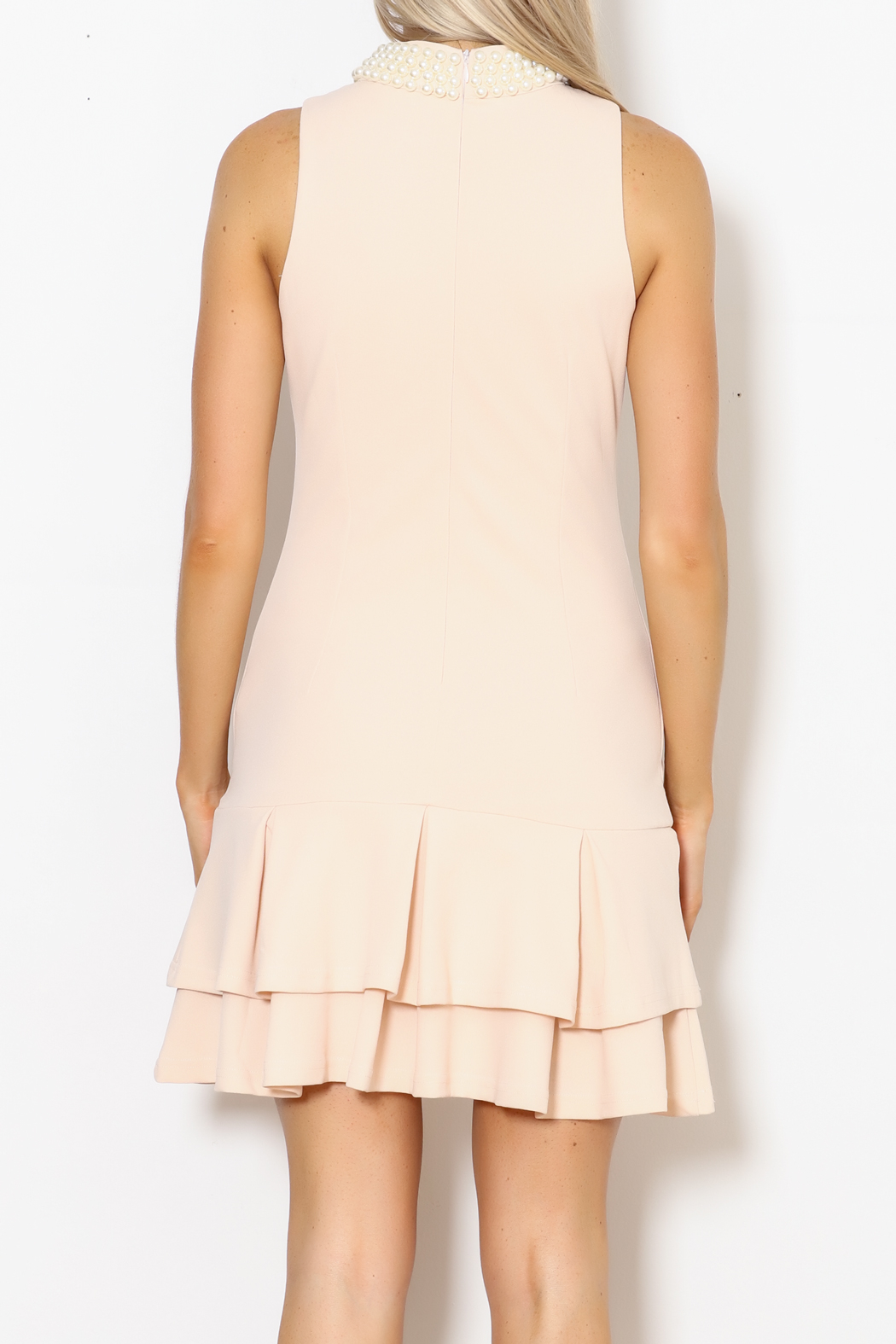 Ina Pearl Collar Dress - Back Cropped Image
