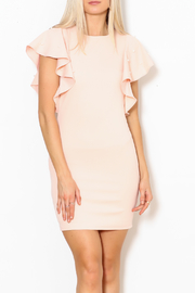 Ina Pearl Sleeve Dress - Product Mini Image