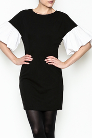 Ina Contrast Ruffle Sleeve Dress - Product Mini Image