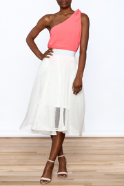 Ina White Mesh Skirt - Front full body