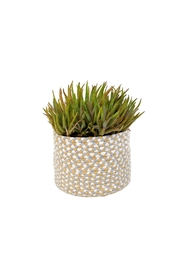 Indaba Chindi Weave Pot - Product Mini Image
