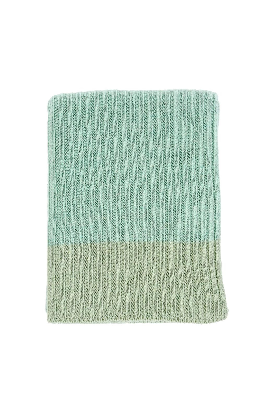 Indaba Jade Stripe Throw - Front Cropped Image
