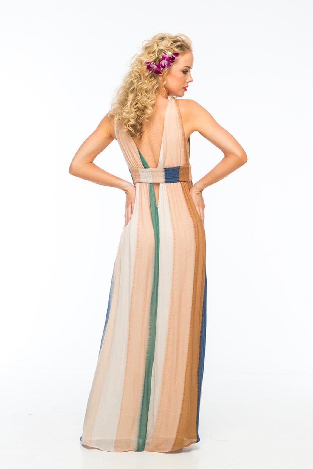 Indah Anjeli Maxi Dress - Side Cropped Image
