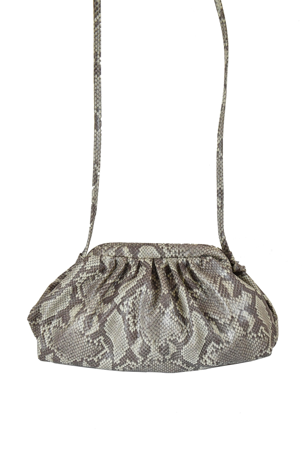 INZI Animal Print Crossbody - Front Full Image