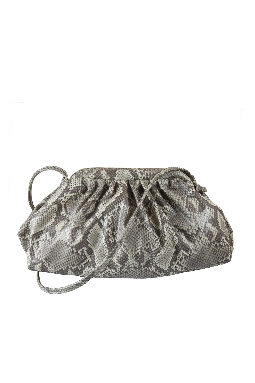 INZI Animal Print Crossbody - Main Image