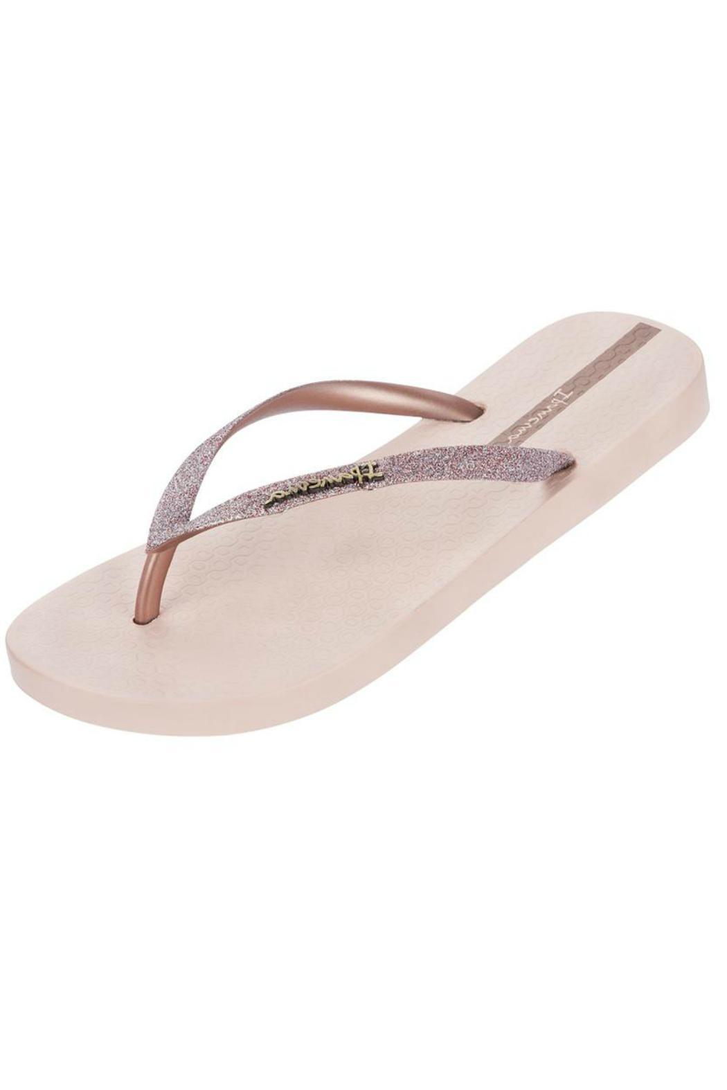c52869beb647aa Ipanema Glitter Flip-Flops from Pennsylvania by Well-Heeled Boutique ...