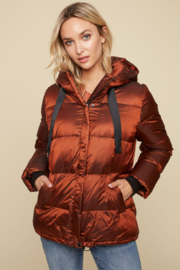 Charlie B. Iridescent Down Hooded Puffer Jacket - Product Mini Image