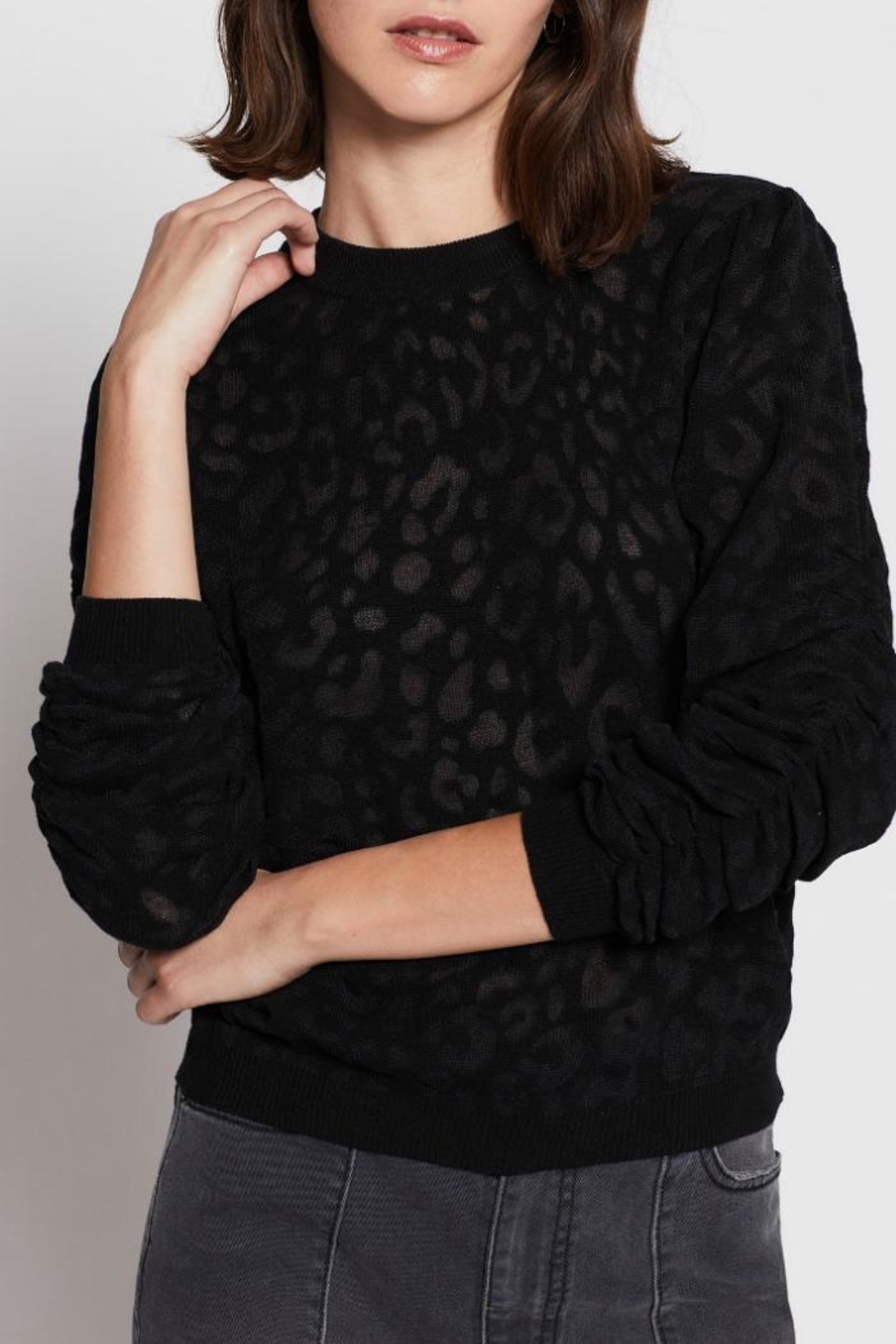 Joie Itana Sweater - Front Cropped Image