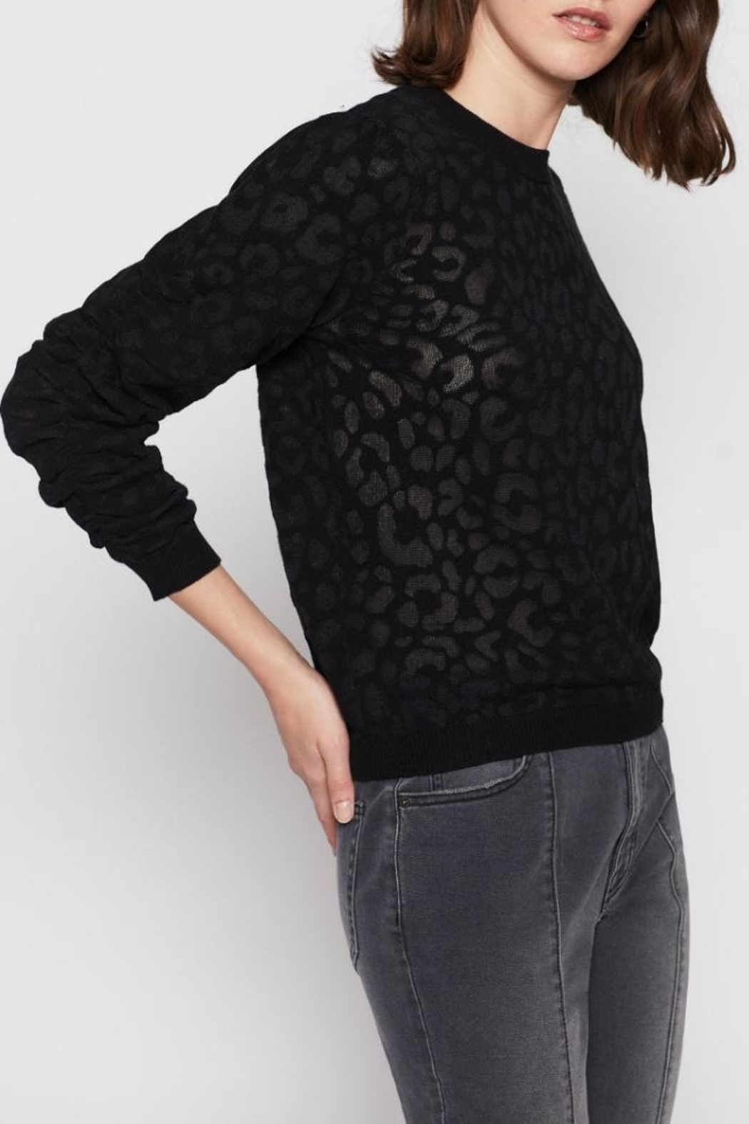 Joie Itana Sweater - Side Cropped Image