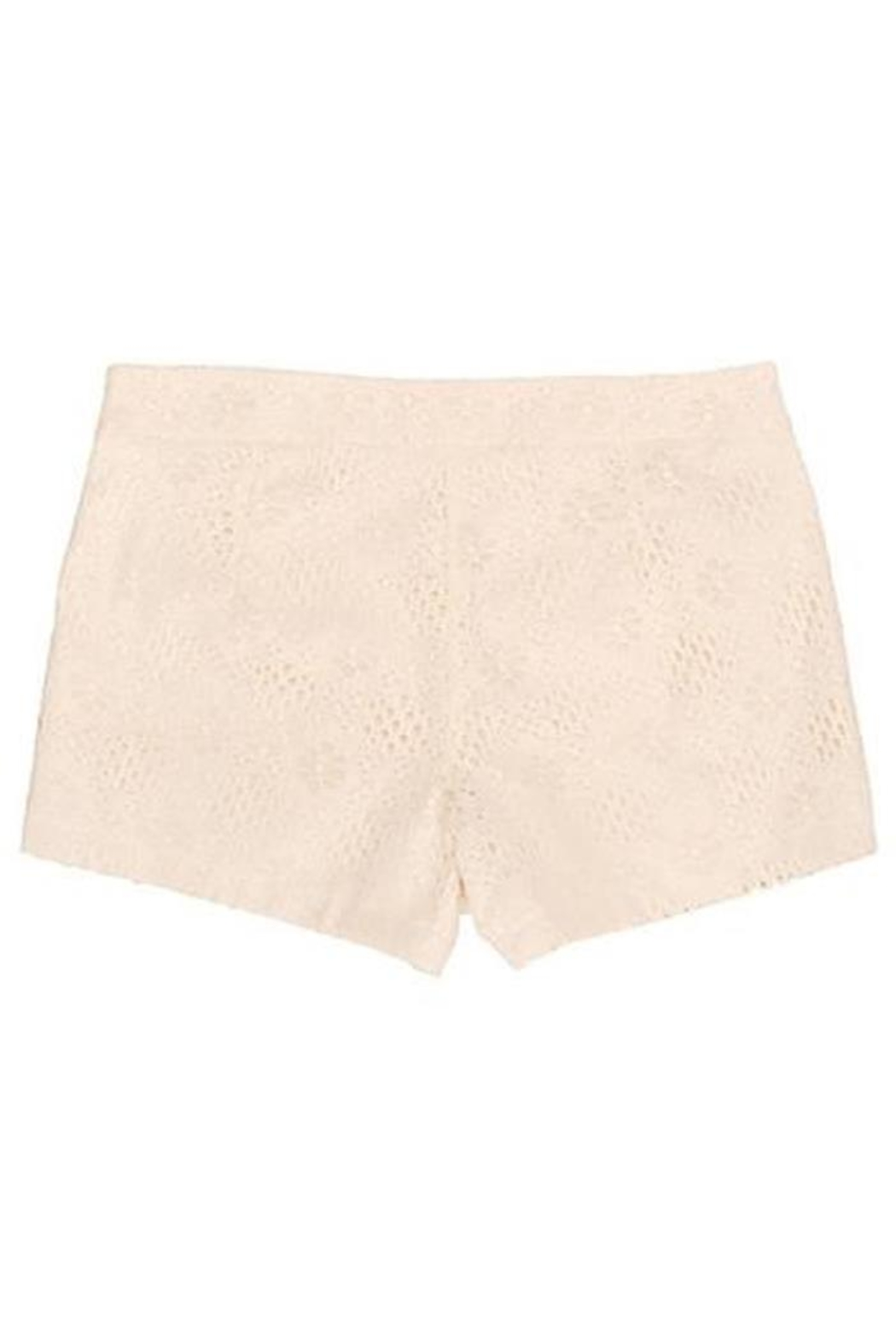 Judith March Ivory Lace Shorts - Side Cropped Image