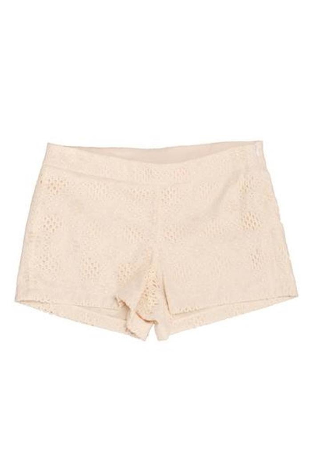Judith March Ivory Lace Shorts - Front Full Image