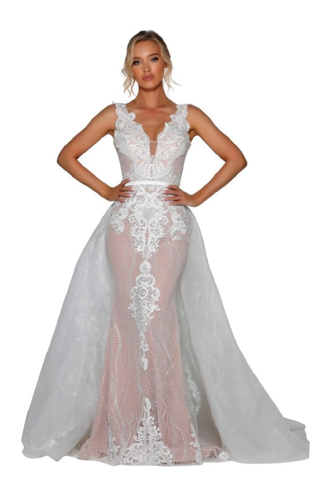 PORTIA AND SCARLETT Ivory & Nude Glitter Lace Bridal Gown With Detachable Train - Main Image