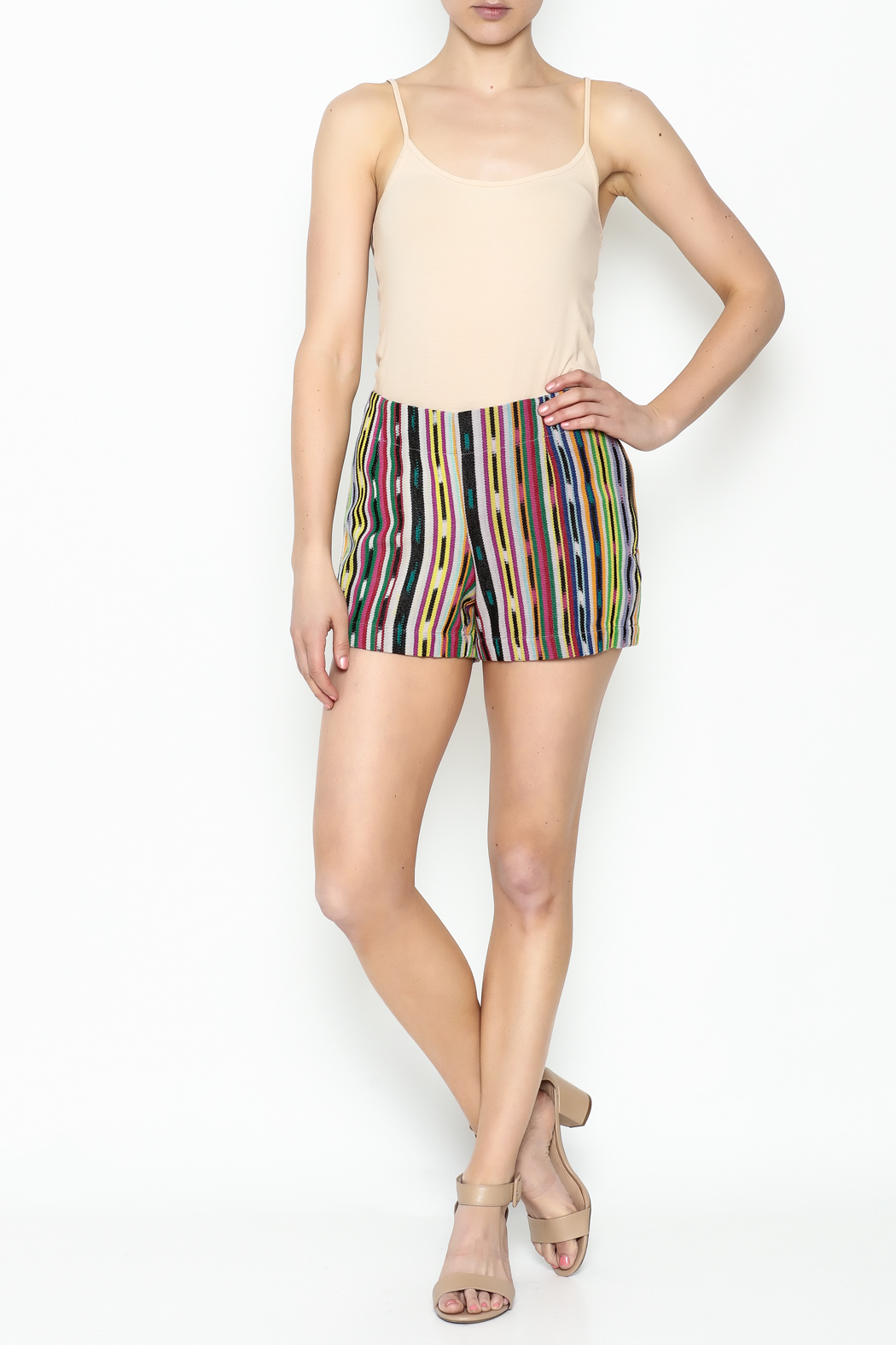 Ivy Jane Serape Printed Shorts - Side Cropped Image