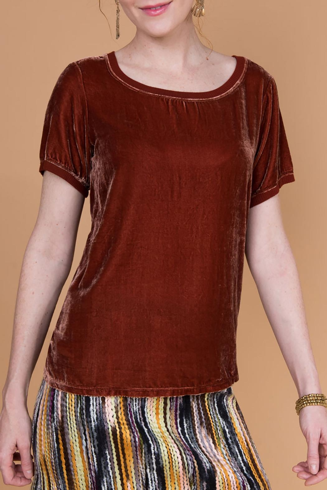 Ivy Jane Silk Velvet Tee - Front Cropped Image