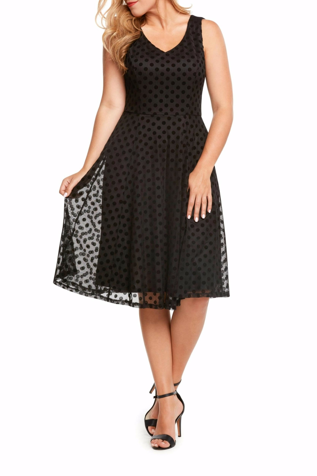 Eva Rose Mesh Dot Dress - Front Cropped Image