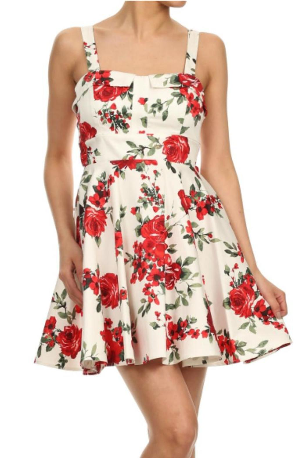 Ixia Run For Roses Dress - Front Cropped Image