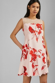 Ted Baker London Jaazmin Mini Dress - Product Mini Image
