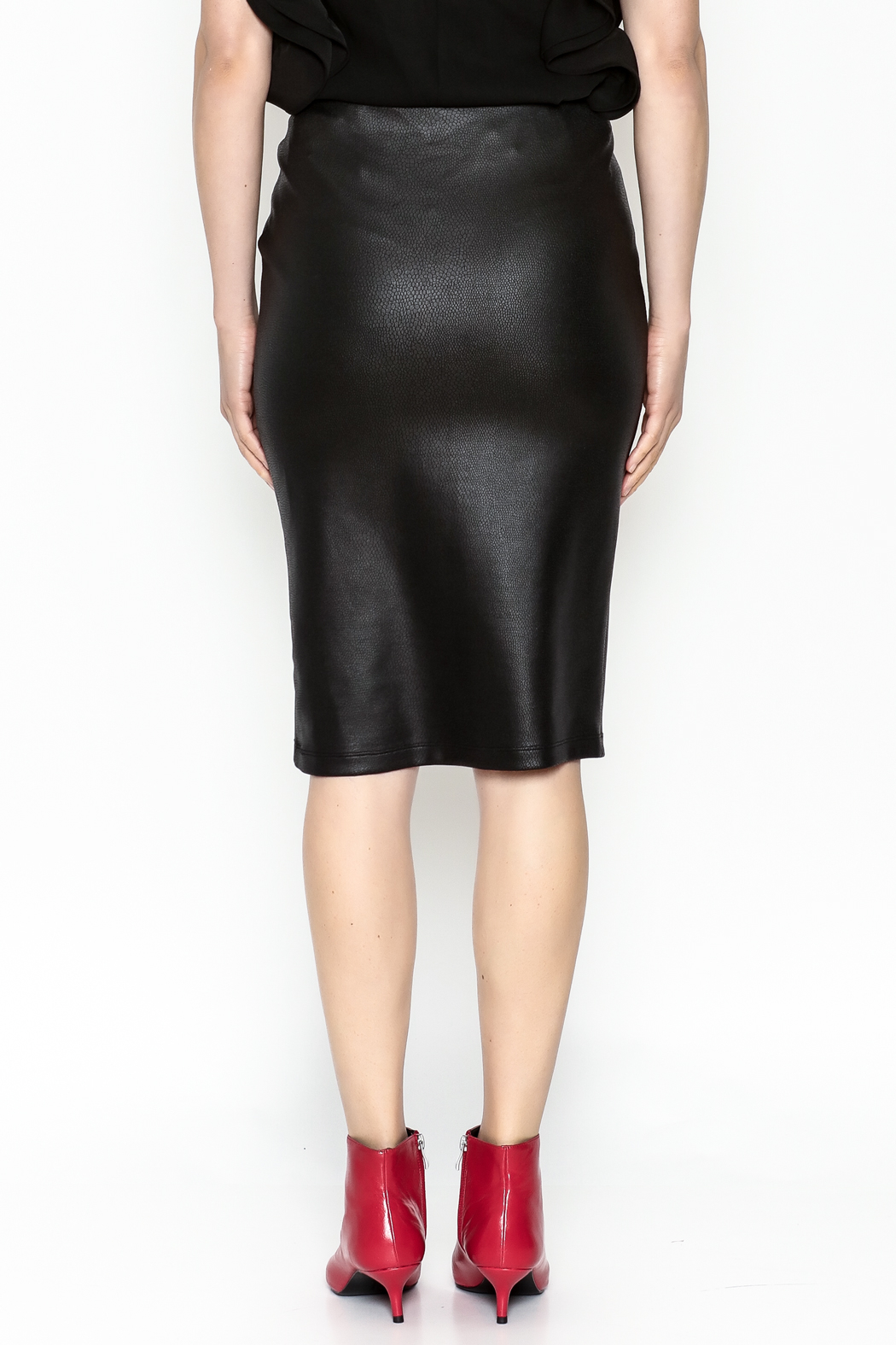 Jack by BB Dakota Chloe Snakeskin Skirt - Back Cropped Image