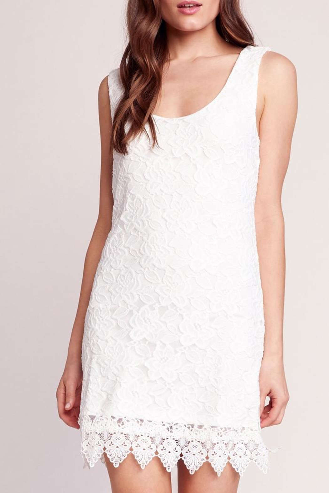 Jack by BB Dakota Lace Body-Con Dress - Front Cropped Image
