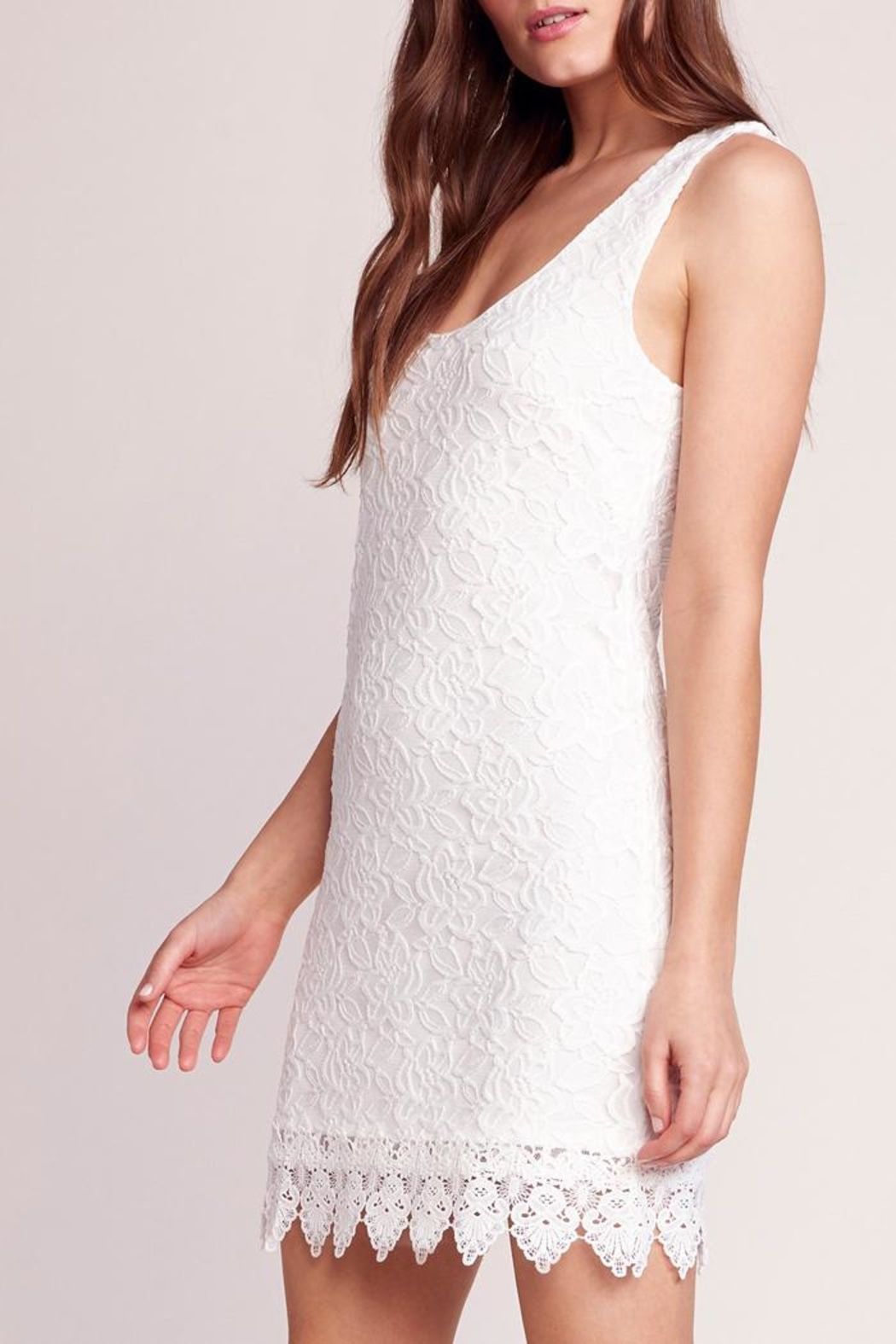 Jack by BB Dakota Lace Body-Con Dress - Front Full Image