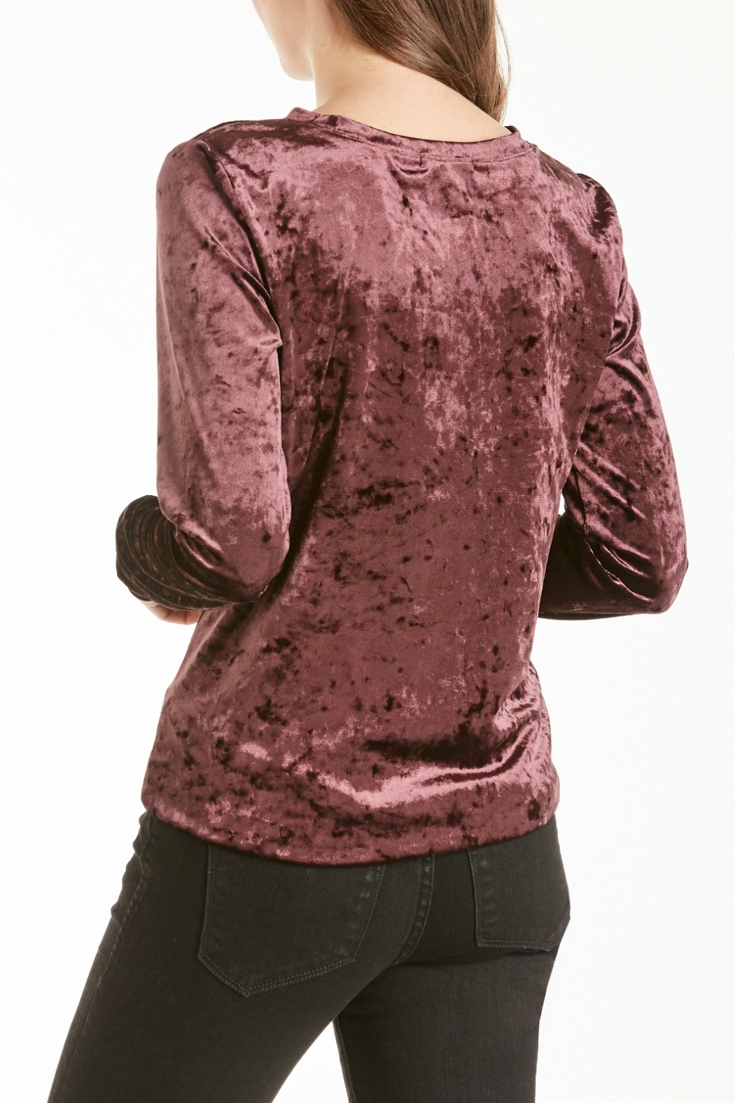 Another Love Jackson Velvet Knot Top - Side Cropped Image