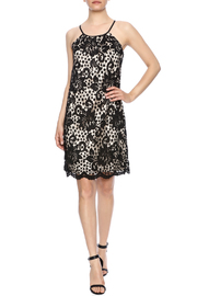 Jade Lace Overlay Dress - Front full body