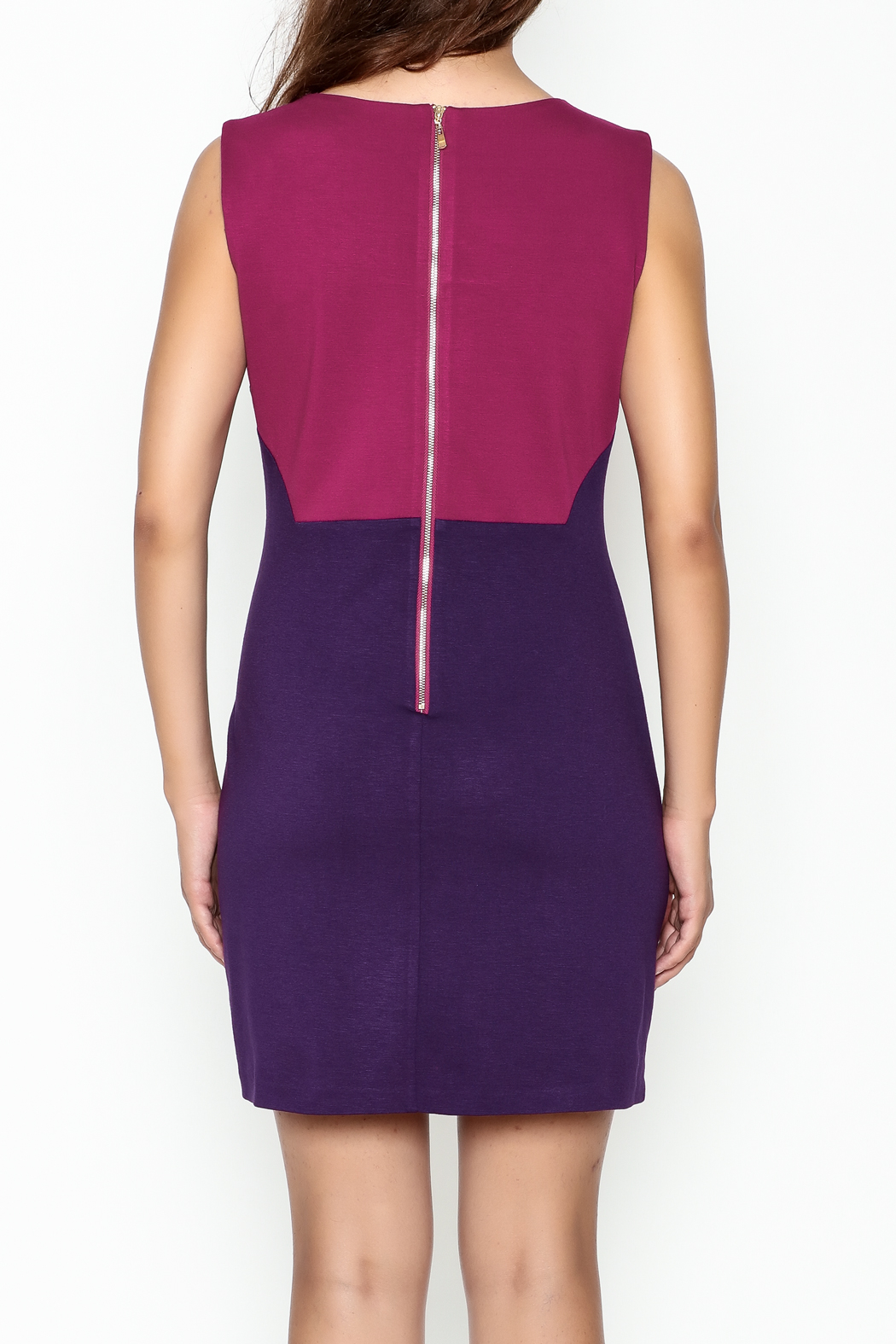 Jade Ponte Knit Dress - Back Cropped Image