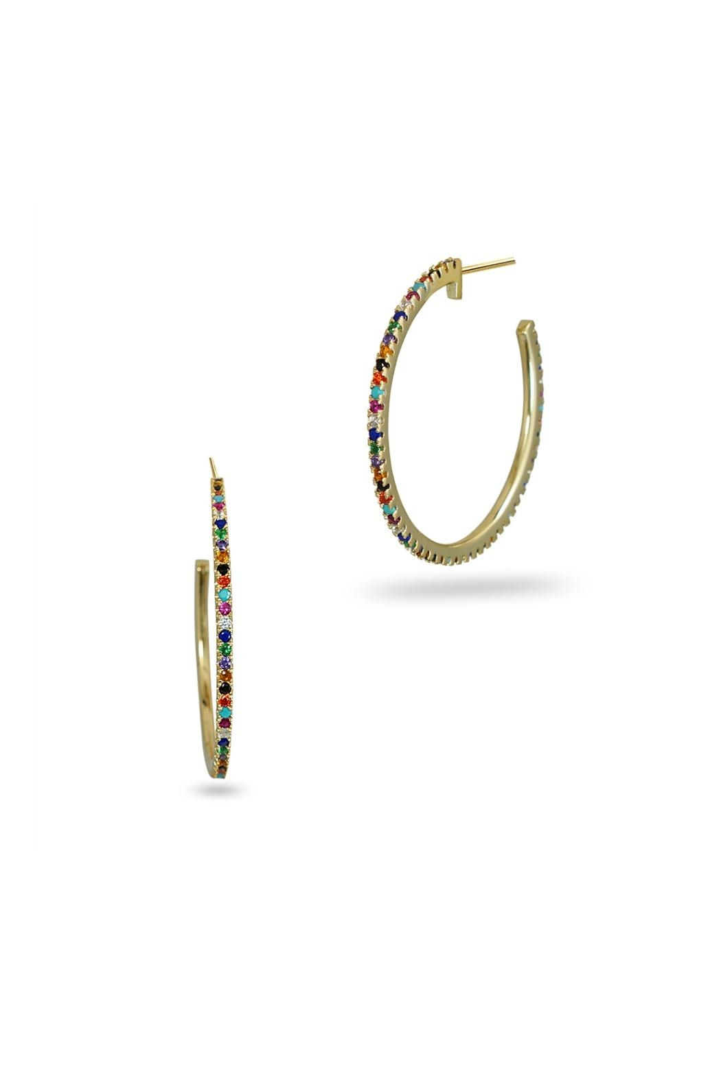Jaimie Nicole Color Hoop Earrings - Front Cropped Image