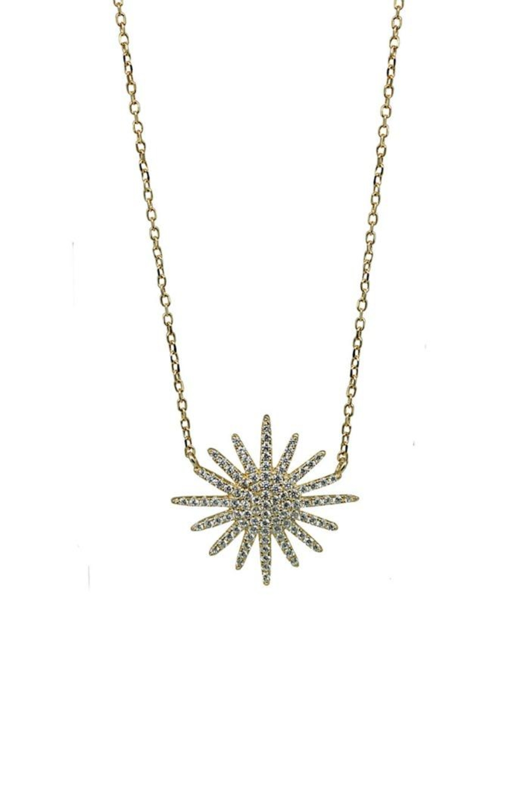 Jaimie Nicole Gold Starburst Necklace - Front Cropped Image