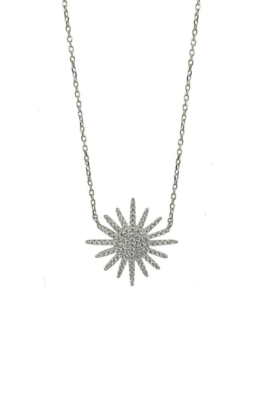 Jaimie Nicole Silver Starburst Necklace - Front Cropped Image