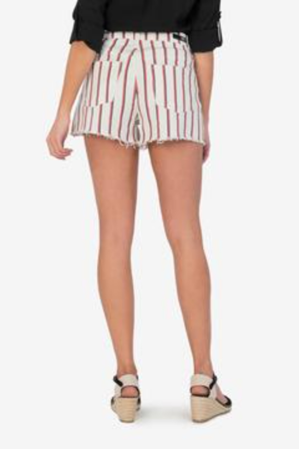 Kut from the Kloth Jane Vintage Stripe - Back Cropped Image