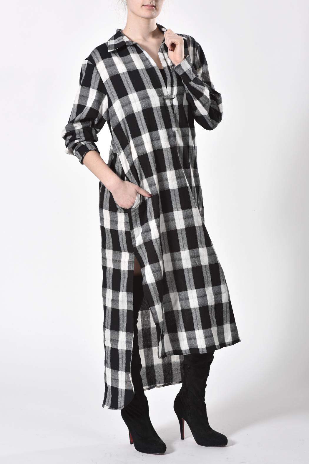 jane plus one Checkered Dress - Front Cropped Image
