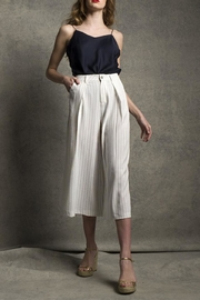 jane plus one Pinstripe Pants - Product Mini Image
