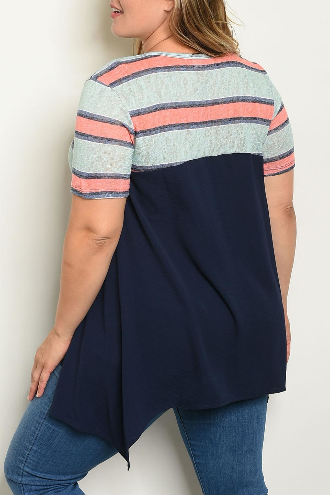 Janette Plus Mint Striped Top - Front Full Image
