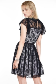 Jawbreaker Lace Overlay Collared-Dress - Other