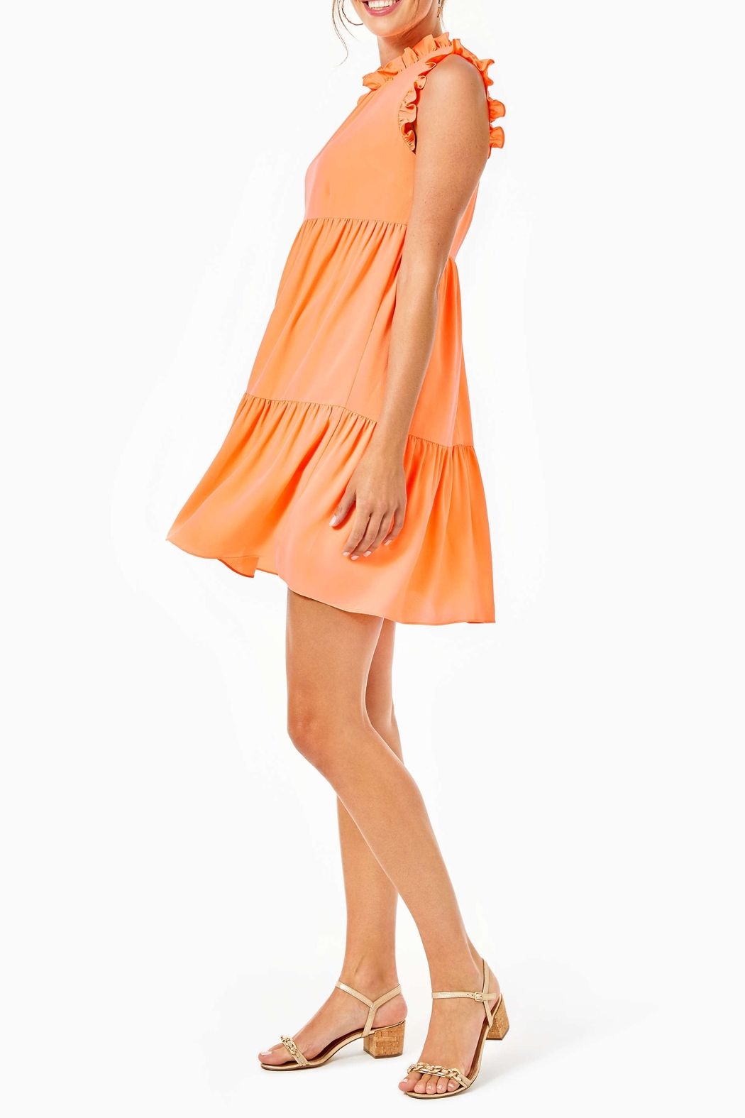 Lilly Pulitzer  Jazzy Dress - Back Cropped Image