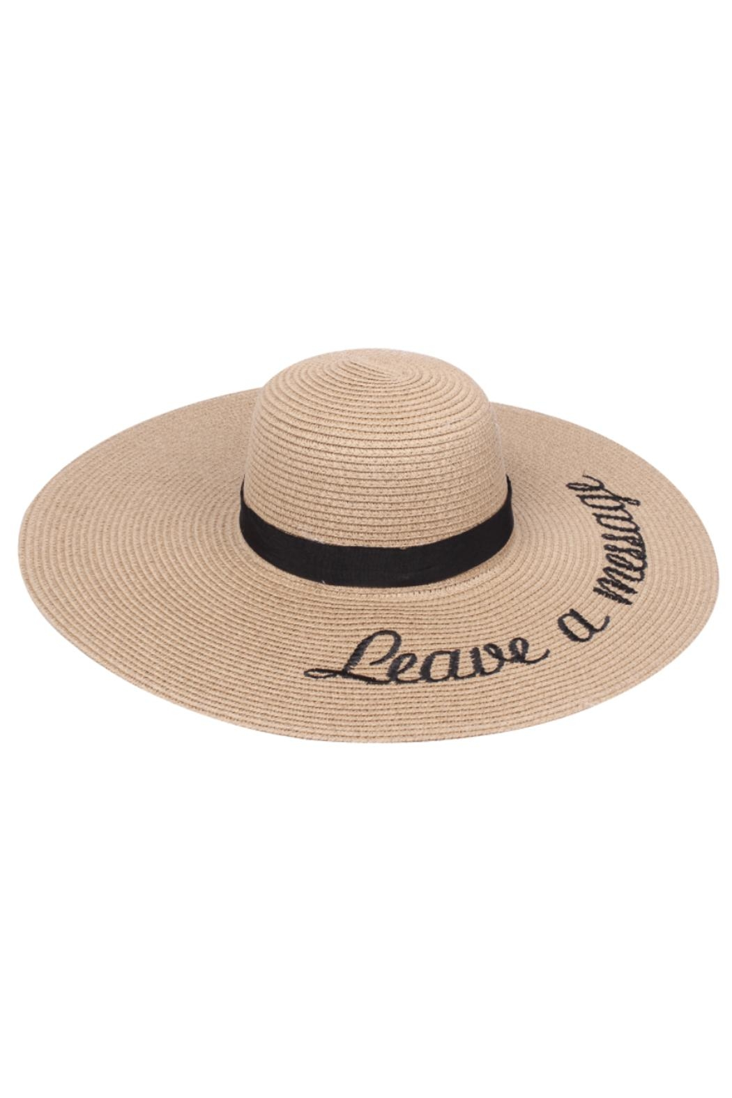 JChronicles Beach Floppy Hats - Front Cropped Image
