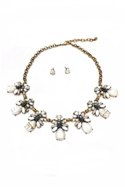 JChronicles Facet Stone Necklace Set - Front cropped