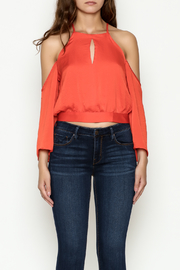 Jealous Tomato Front Tie Top - Front full body