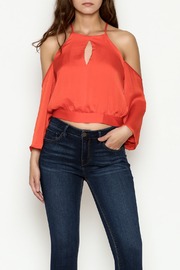 Jealous Tomato Front Tie Top - Product Mini Image
